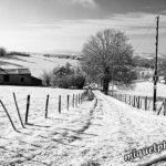 Formation photo en noir et blanc
